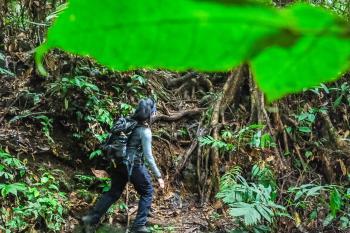 The Hidden Paradise, Desa Tangkahan saat pandemi